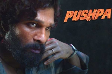 Allu Arjun charges a bomb for Pushpa