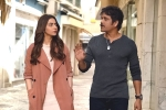 Manmadhudu 2 movie review and rating, Manmadhudu 2 Movie Tweets, manmadhudu 2 movie review rating story cast and crew, Nagarjuna