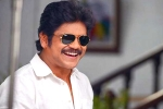 Nagarjuna's Next Film Finalized